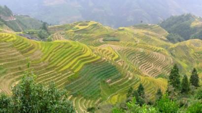 Guilin : Paysages féeriques du sud