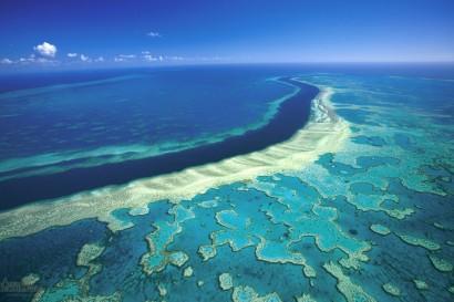AP12-AUS-Grande Barrière de corail04