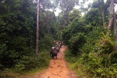 LP9-Laos-Champassak10